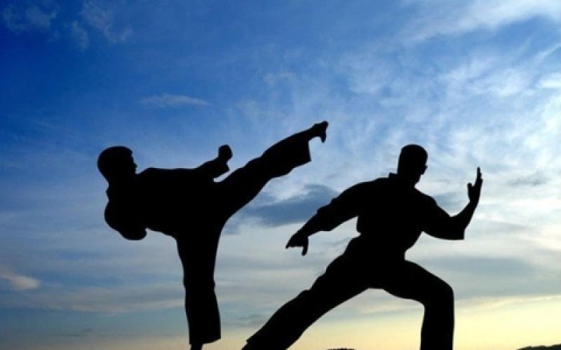 Stage Nazionale di Fudokan Shotokan