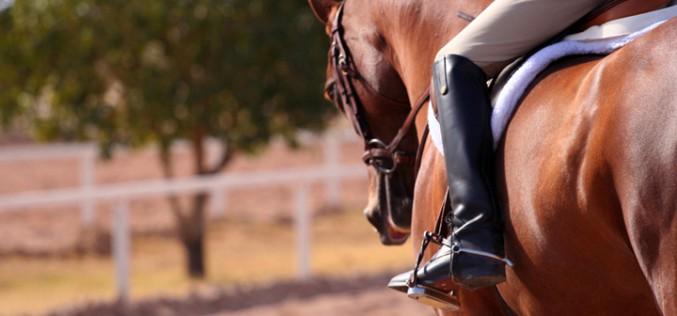 Corso di formazione per Istruttore di equitazione