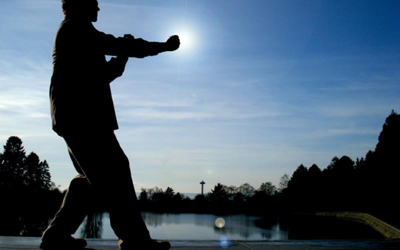 Stage Wing Chun