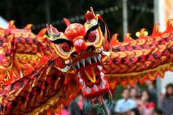 Wushu Kung Fu Opes in Belgio per il Capodanno Cinese