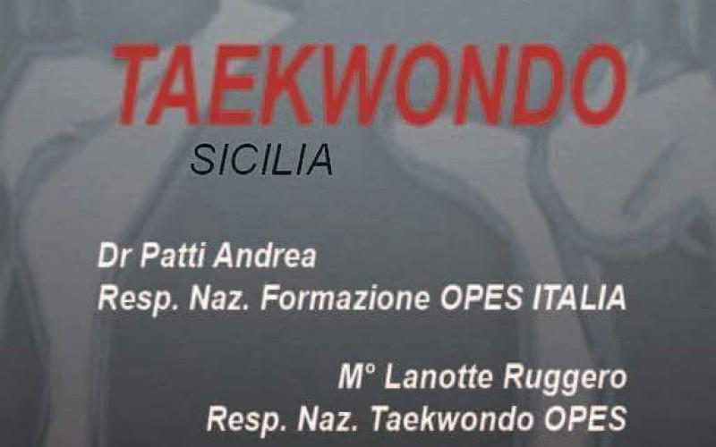 Corso Allenatore/Istruttore I.T.F./ PRO Taekwondo