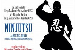 Stage Nazionale Ninjutsu