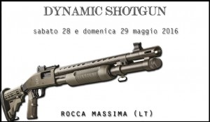 dynamic2