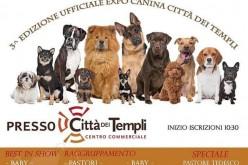 3° Edizione Ufficiale Expò Canina Città dei Templi