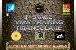 II° Stage MMA Training Triangolare