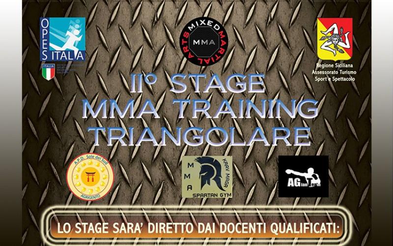 II° Stage MMA Training Triangolare