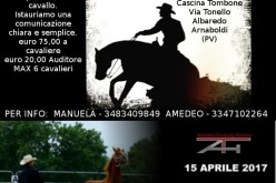 Equitazione: Clinic con Amedeo Training Horse
