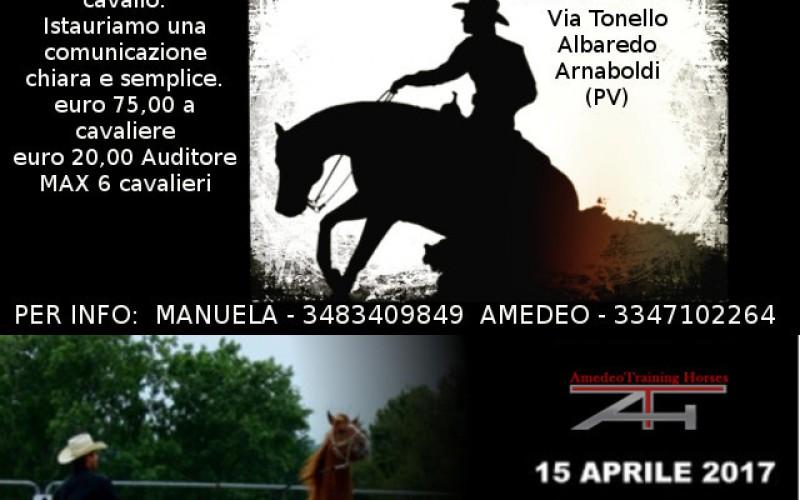 Equitazione: Clinic con Amedeo Training Horse