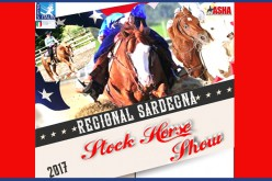 In arrivo Stock Horse Show