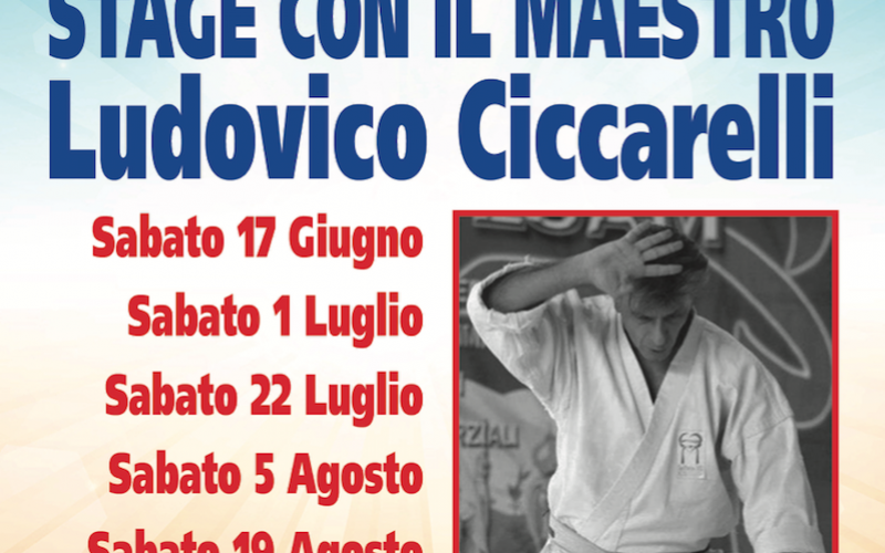 Karate: a Rimini Stage per l'estate 2017