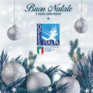 Buon Natale e Buon Anno -OPES (2)