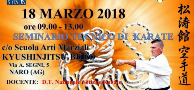 Seminario di Karate Shotokan