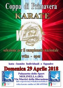 coppa primavera molinella karate