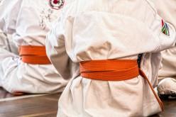 Karate e Tactical Defense Security Close Combat, a Segrate c'è il 1° Seminario 2018