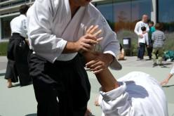 Stage di Aikido ad Enna e Caltanissetta