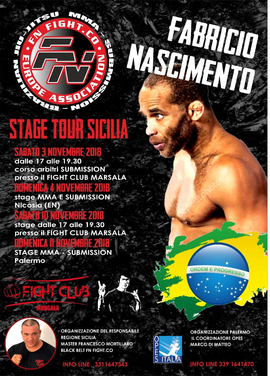 stage brazilian jiu-jitsu frabricio nascimento