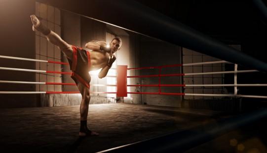Stage di kickboxing con i fratelli Petrosyan