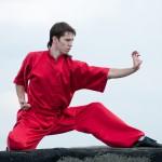kung fu stage per giulia rinaldo