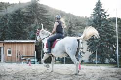 Equitazione: il coordinatore nazionale Franco Trausi lancia un nuovo modo di fare agonismo