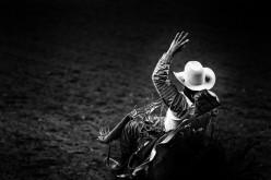 Equitazione americana, il 26 maggio parte il Campionato di Gimkana della Regione Piemonte