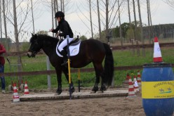 Equitazione americana, tutti i risultati della prima tappa del Campionato Interregionale Veneto – Emilia Romagna di Gimkana