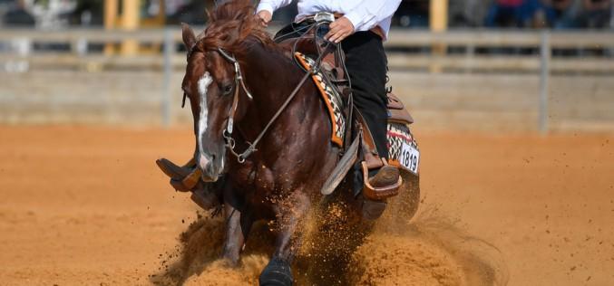 Equitazione americana, il menu di giugno è ricco di gare e manifestazioni