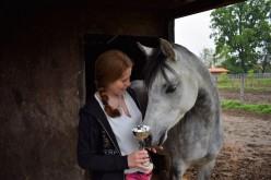 Equitazione, a giugno l'Horse Natural Championship sarà in Sicilia