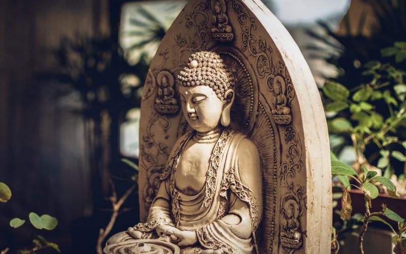 Al via il corso di formazione per istruttori Shaolin, il Kung Fu dei monaci buddisti