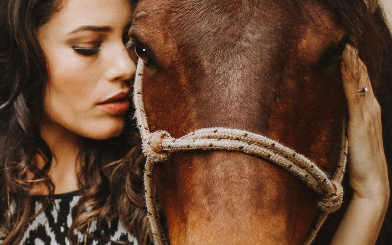 Horse Feeling, il percorso formativo che permette di conoscere e capire i cavalli