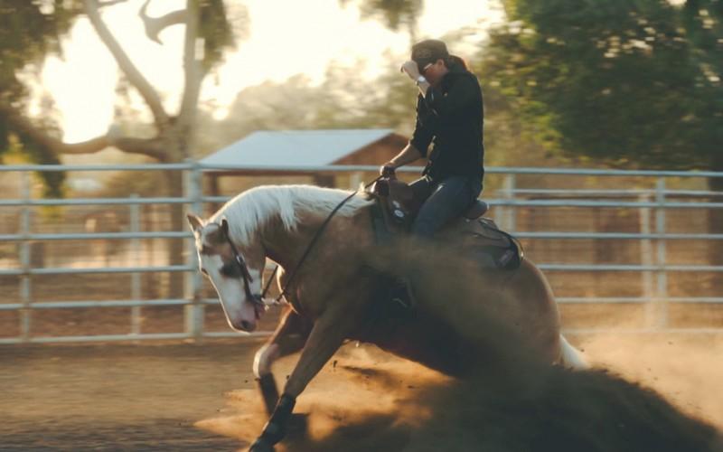 Equitazione Western, dal 22 al 25 novembre il corso per tecnici di I Livello