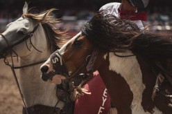 Equitazione Americana, grande commozione alla finale del Western and English Dressage