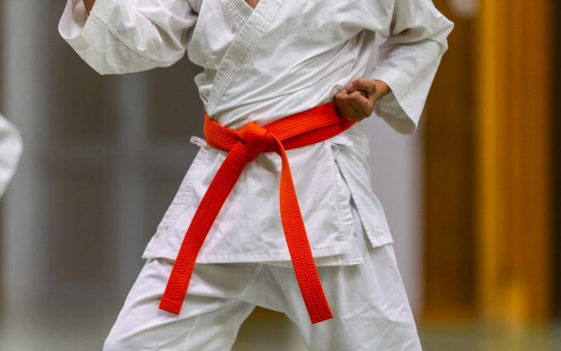 Coppa di Natale di Karate al Palazzetto HSC di Roma