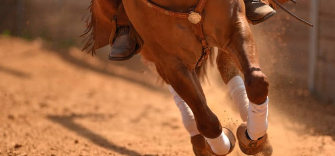 Equitazione Americana, al Two Penning presente anche il Cavallino Rampante