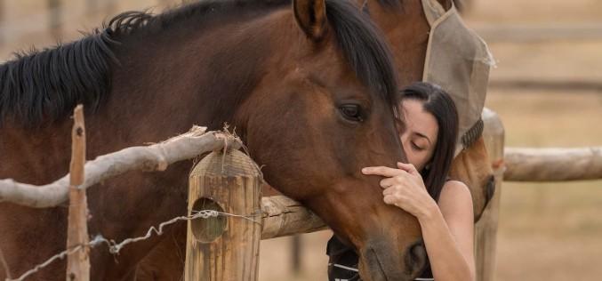 OPES promuove il percorso formativo dell'Horse Feeling