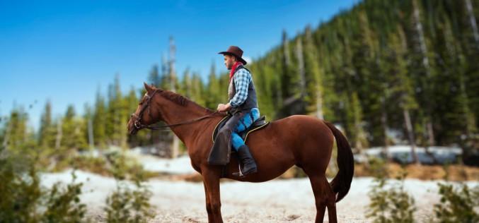 Equitazione Americana, nel 2020 tanti nuovi appuntamenti