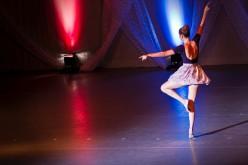 La Barletta Art Academy continua ad affiancare gli allievi con le lezioni a distanza