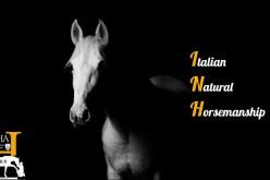 Equitazione: presentato il Dipartimento dedicato al Natural Horsemanship