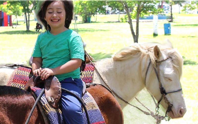 Un corso per diventare educatore sportivo in ambito equestre