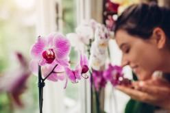 26 e 27 settembre, Festa dei nonni: le Associazioni OPES al fianco di UNICEF nella campagna Orchidea