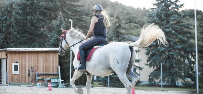 Equitazione: che cosa si potrà fare nelle fasce rosse, arancioni e gialle?