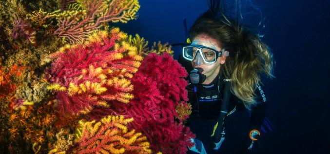 Palermo: il 17 giugno c'è Open Wave, la serata per chi ama il mare e la subacquea