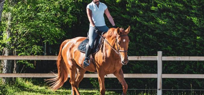 Il green pass per lavoratori ed atleti del settore equitazione. Che cosa cambia dal 15 ottobre?